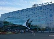 Москвариум на ВДНХ Автобусный тур из Владимира