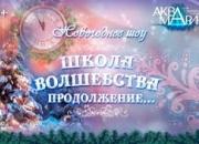 """Цирк танцующих фонтанов """"Аквамарин""""  Новогоднее шоу."""