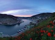 Весенний Крым: цветенье миндаля
